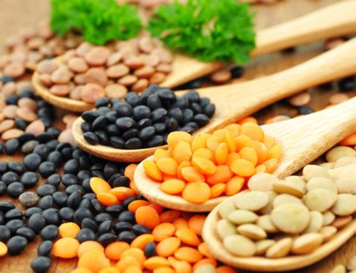 Ernährung bei Reizdarm: Ballaststoffe – Fluch und Segen zugleich