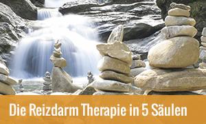 Reizdarm Therapie in 5 Säulen